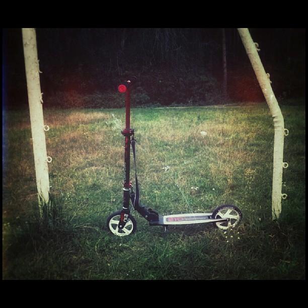 Моё сегодняшнее ТС. #самокат #scooter #cycle
