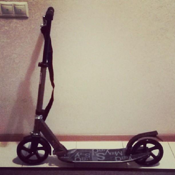 Моя радость! =^^= #oxelo #kickscooter #scooter #самокат