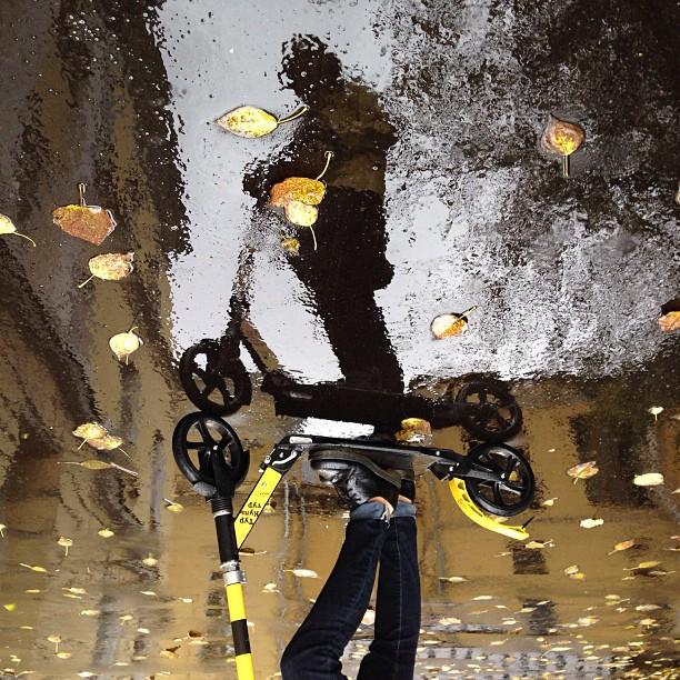Осень от #beeturkultur это очень круто, попробуйте. В дождь вместе с самокатом дадут дождевик!