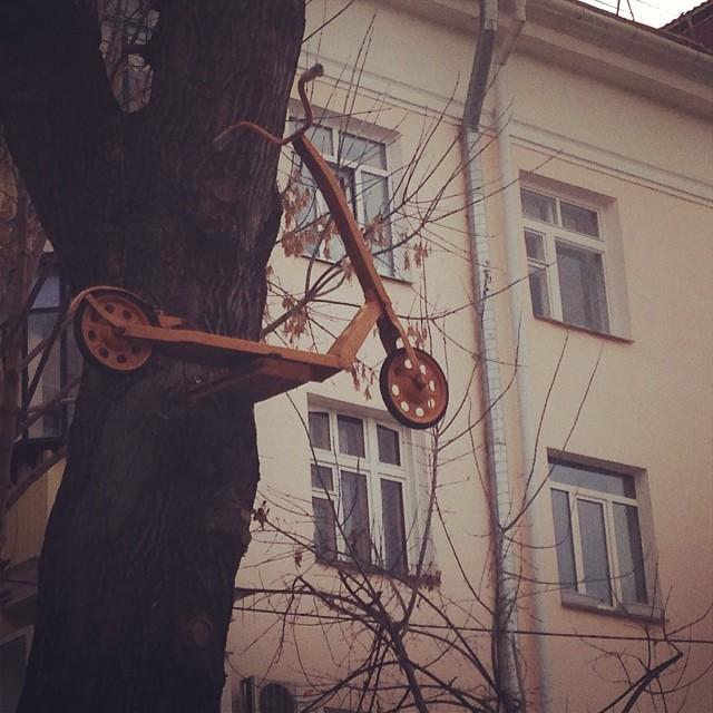 #самокат #на #дереве