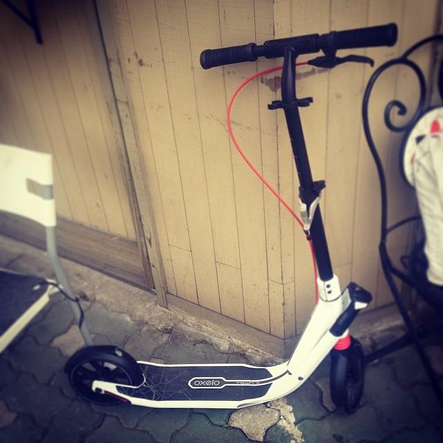 #오셀로 #oxelo #kickscooter #scooter #씽씽이 #킥보드 #싱가폴 #데카트론에ㅛㅏ 구입 #짱잼