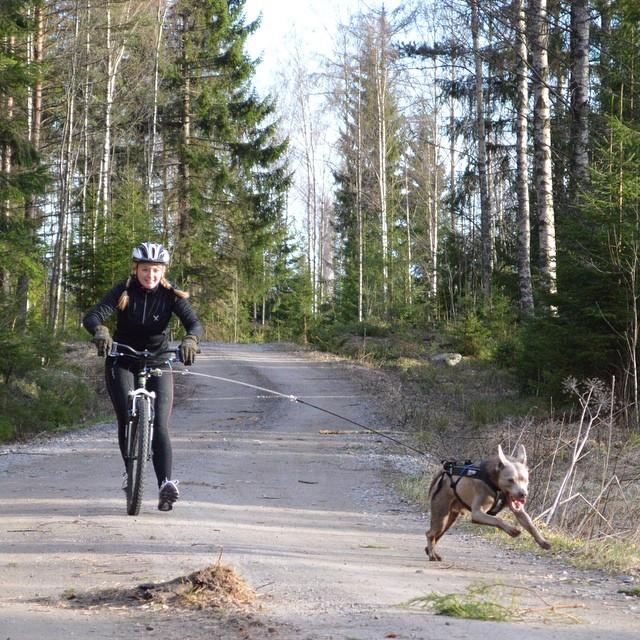 Автор фото: petrahermansson