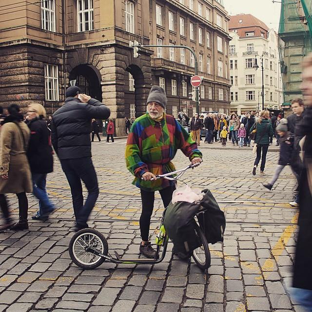 Автор фото: vlastovka.ann