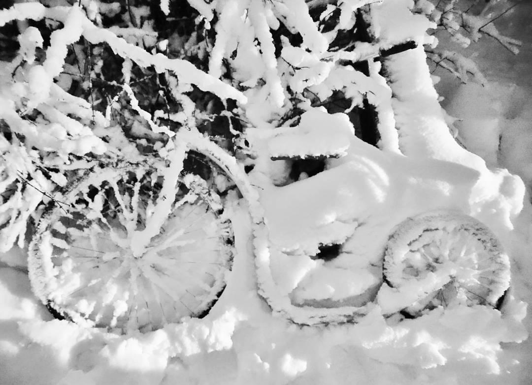 Автор фото: sideviewbike